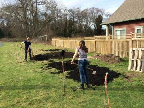 С чего начать облагораживание участка?. Подготовка почвы в садово-огородной зоне