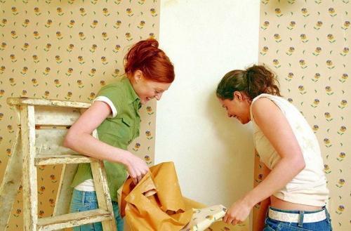 Ремонт в доме своими руками практичные советы по ремонту. 10 полезных советов для ремонта в закладки 2