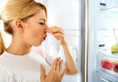 Как убрать запах из холодильника ноу фрост. Запах из нового холодильника no frost
