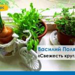 Самое вкусные овощи и травы - это те, которые ты вырастил сам.