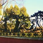 Самые красивые ограды Петербурга.