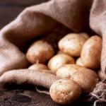 Как сохранить урожай картофеля до весны без потерь.
