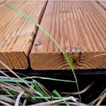 Как защитить древесину от процесса гниения.