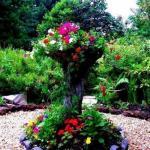 Идеи по использованию пней в декоре сада.