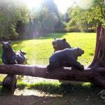 Малоизвестные парки вокруг Петербурга: зеленогорский яблоневый сад.