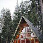 Вот такие дома сейчас на пике популярности в северной Америке.