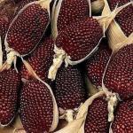 Земляничная кукуруза.  Земляничная кукуруза - это новинка на наших прилавках, торгующих семенами.