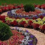 4 главных правила оформления цветочных клумб.