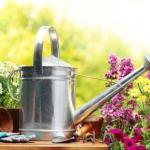 Советы дачникам, садоводам, огородникам.