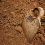 Как узнать тип почвы, и зачем это нужно.